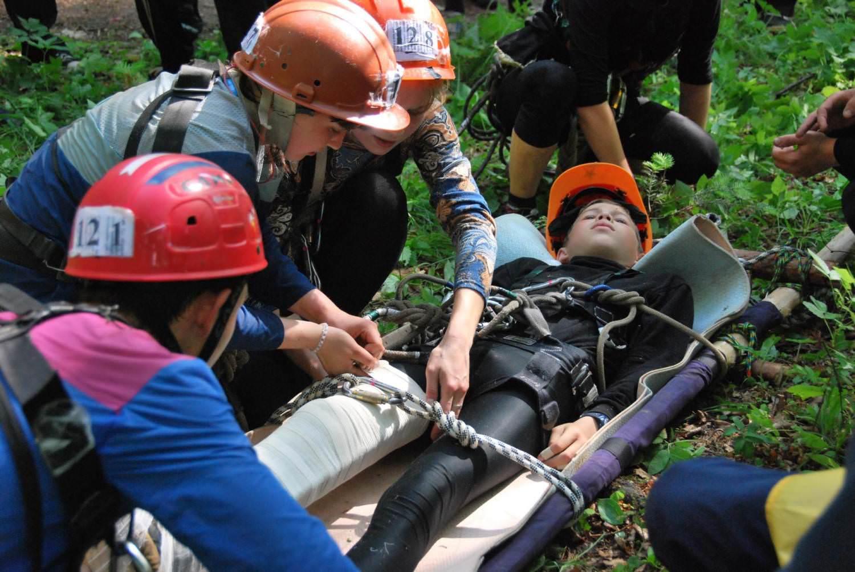 Помощь в лесу