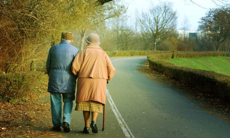 пожилые на прогулке